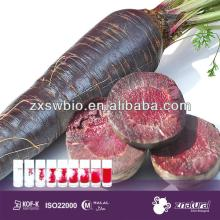 edible color black carrot powder with hight qaulity
