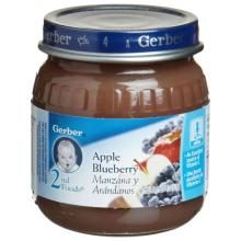 2ND FOODS APPLE BLUEBERRY PUREE 12 CASE 4 OUNCE