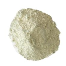 Powder Milk - whole milk