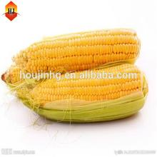 raw material new china products for sale corn starch