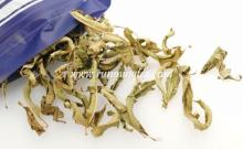 dried lemon verbena tea