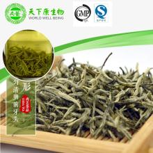 organic green tea dry leaves rich in selenium radiation protection antioxidant