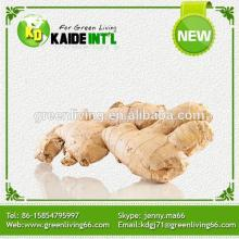 Special Ginger Product Manufacturers