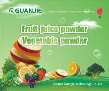 fruit juice powder goji berry juice powder