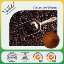 free sample top quality 10% theobromine coca seeds for sale made in China