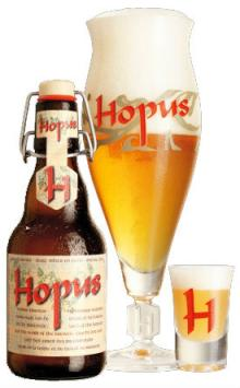 Hopus Strong Blonde Ale - 330ml (BELGIAN BEER)