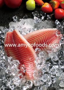 Tilapia Fillet high quality guaranteed
