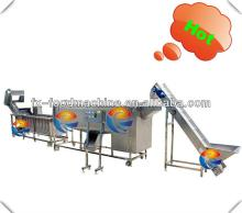 agricultural potato processing line