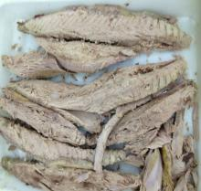 supply frozen skipjack tuna loins cooked good for marine suppliers