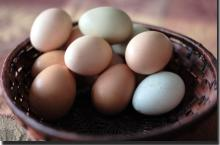 Fresh Table Eggs Brown And White