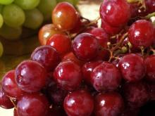 Fresh Grapes for sell