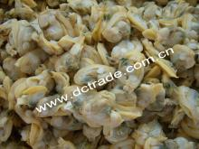 Frozen Boiled Short-Necked Clam Meat, Untreated