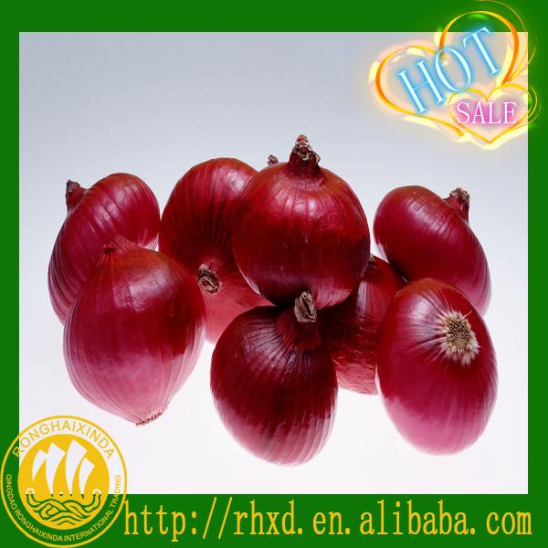 2014 new corp fresh small onions