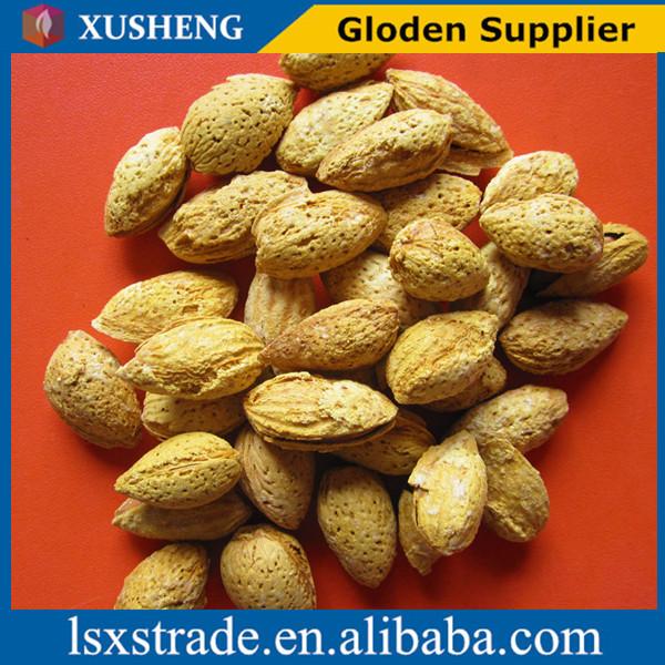Raw almonds shell
