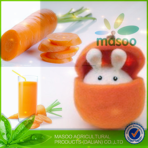 Export price for 2014 fresh seasonable vegetables red carrot /carrot exporter in China
