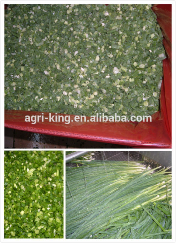 Chive types IQF & Frozen green onion