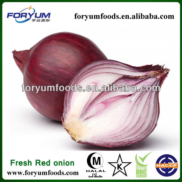 Red Fresh Onion types red onions