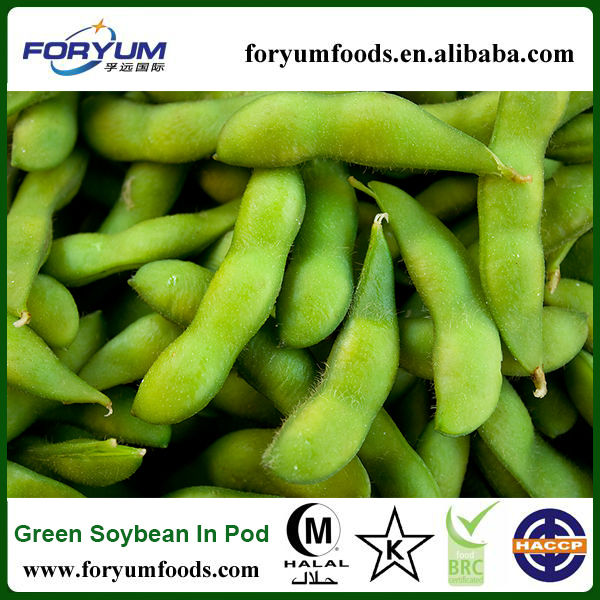Chinese 2013 New Crop organic soybean
