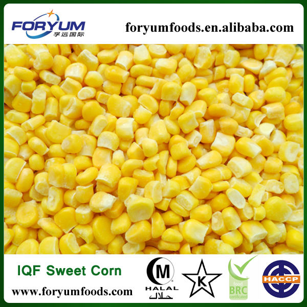 Frozen Sweet Corn Seed