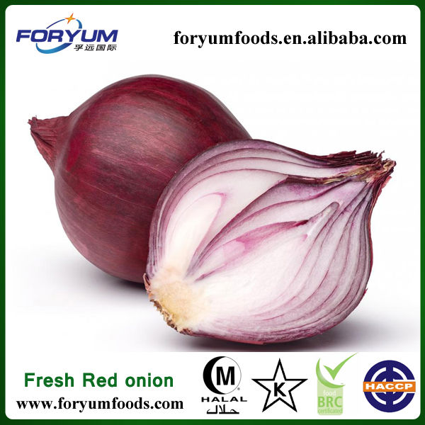 All Types Of Fresh Red Onions