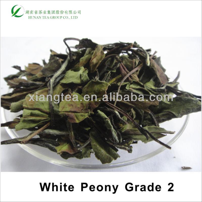 China White Peony 6902 White Tea