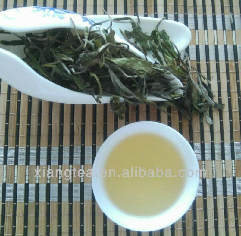 China Fujian white tea 6900/6901/6902