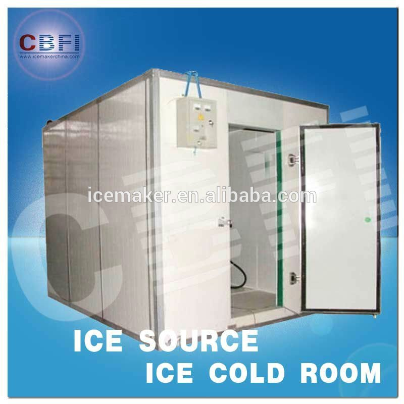 Winteco Ice Hotel Room Air Coolers : Container cold room for fish products china
