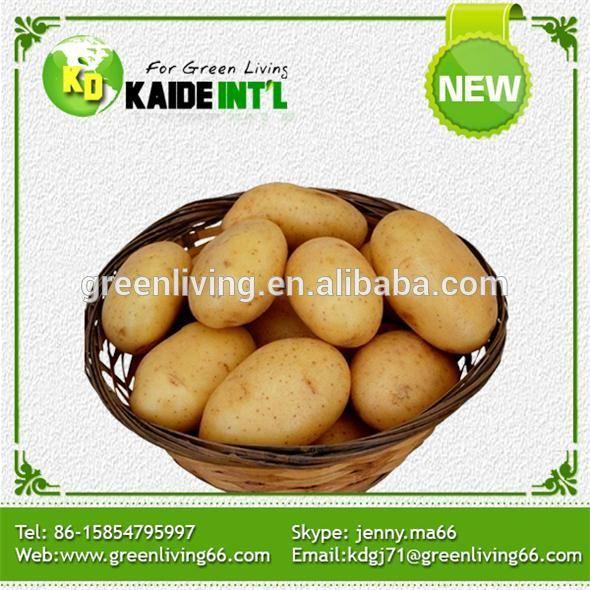 2014 Vegetable Fresh Potato