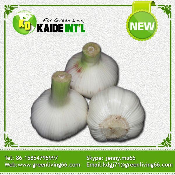 its about onion cold storage infomation It's best to store regular onions in a cool, dry, dark and  storing whole onions  in the fridge exposes them to cold, humid conditions.