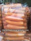 Shandong fresh carrots
