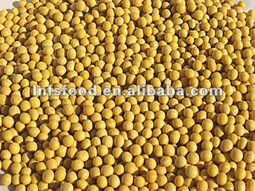 Organic Dried soybean non gmo