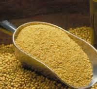 Soybean For Animal feed