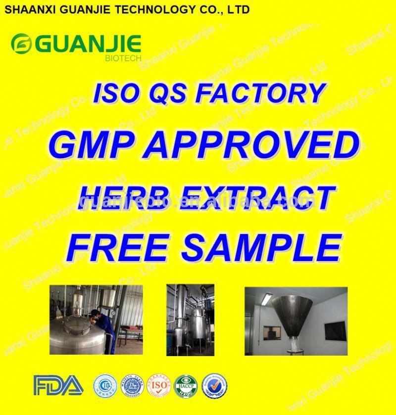 High Quality Free Sample Natural GREEN TEA LEAF PE DECAFFEINATE