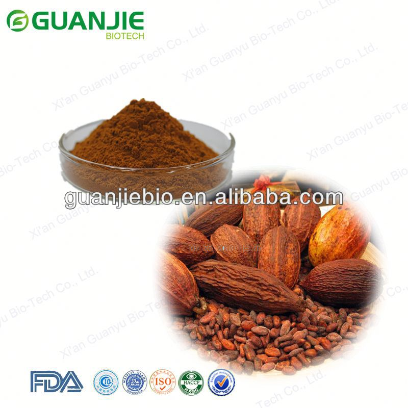 High Quality Natural Cocoa Bean Extract Powder Cocoa Bean Extract