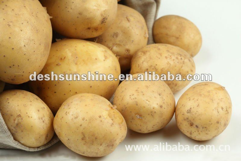 potato, exporters of fresh Potato products,China 2013 new crop potato ...