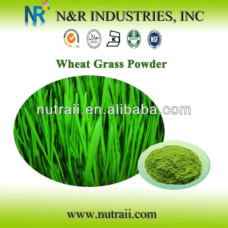 Organic Wheat Grass Powder and Wheat Grass Juice Powder