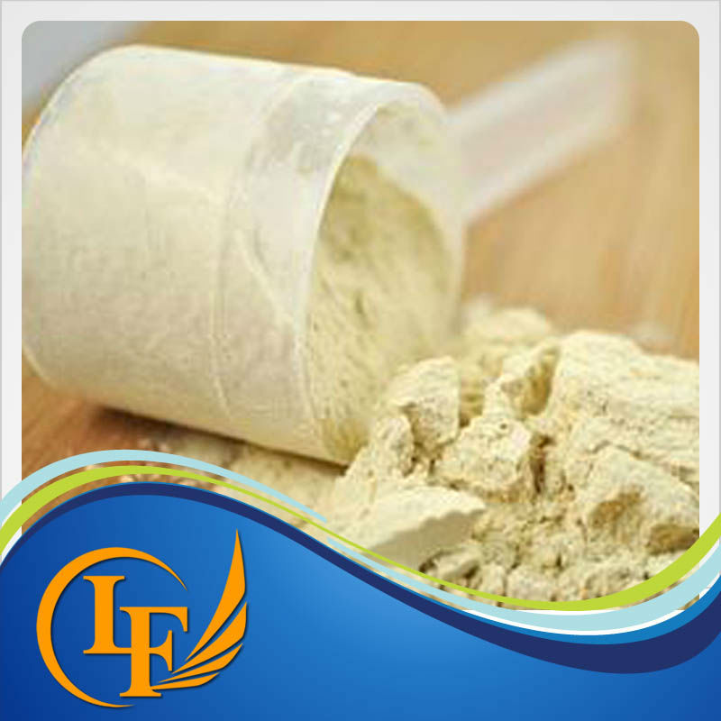 Chocolate /Strawberry/ Vanilla flavour Protein Powder Body Building