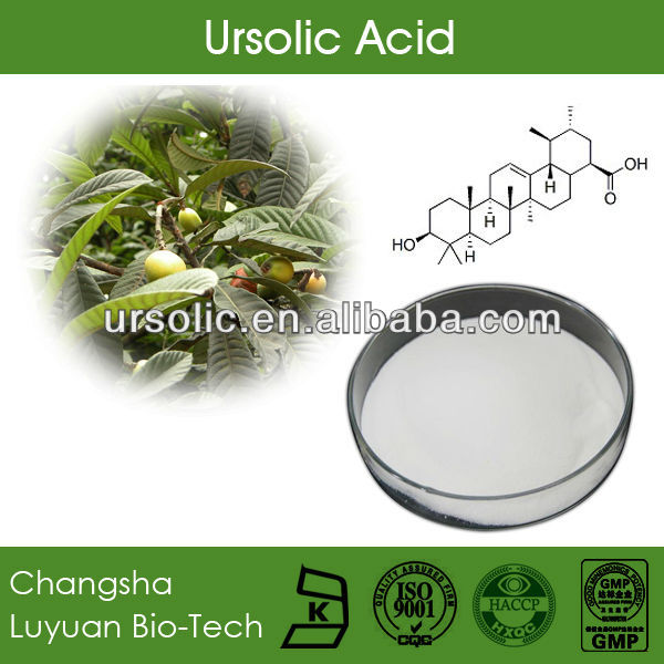 Ursolic Acid 98% Powder | CAS 77-52-1