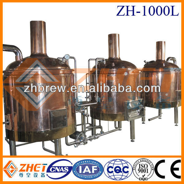 1000l Electricity Steam Lpg Gas Direct Fire Heating Beer