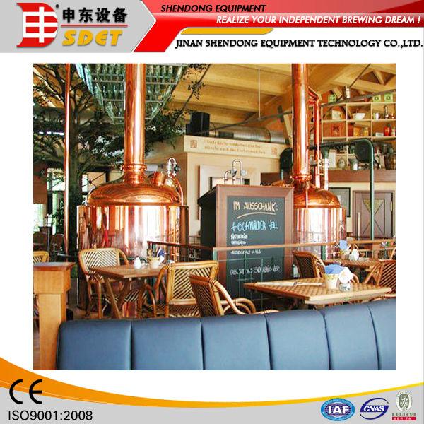 100L Pub/Bar/Hotel Fresh Beer Brewing Equipment