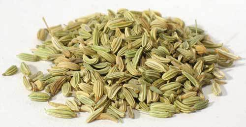 Fennel Seeds in Malay Singapore Quality Fennel Seed