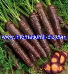 Black Carrot Juice color