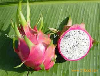 OFFER FOR FRESH DRAGON FRUIT BEST QUALITY FROM VIETNAM