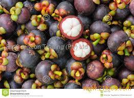 Mangosteen Fruits Products South Africa Mangosteen Fruits Supplier