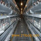 Day Old Chicks Cage