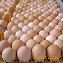 table eggs for supply