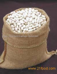 white kidney beans for supply