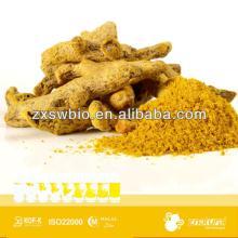 95%  Curcumin  oid  yellow  turmeric  yellow  color in food additive