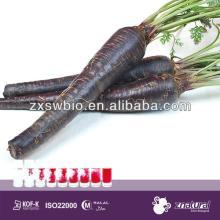 meat food ingredients black carrot pigment