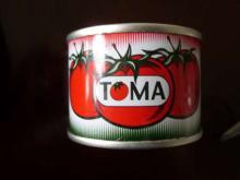 70g  factory price  tomato  sauce